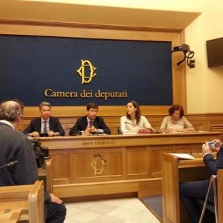 camera_referendum