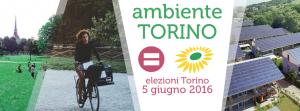 torino_elezioni